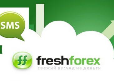 Лучшие акции Фреш Форекс теперь доступны на счетах МТ5